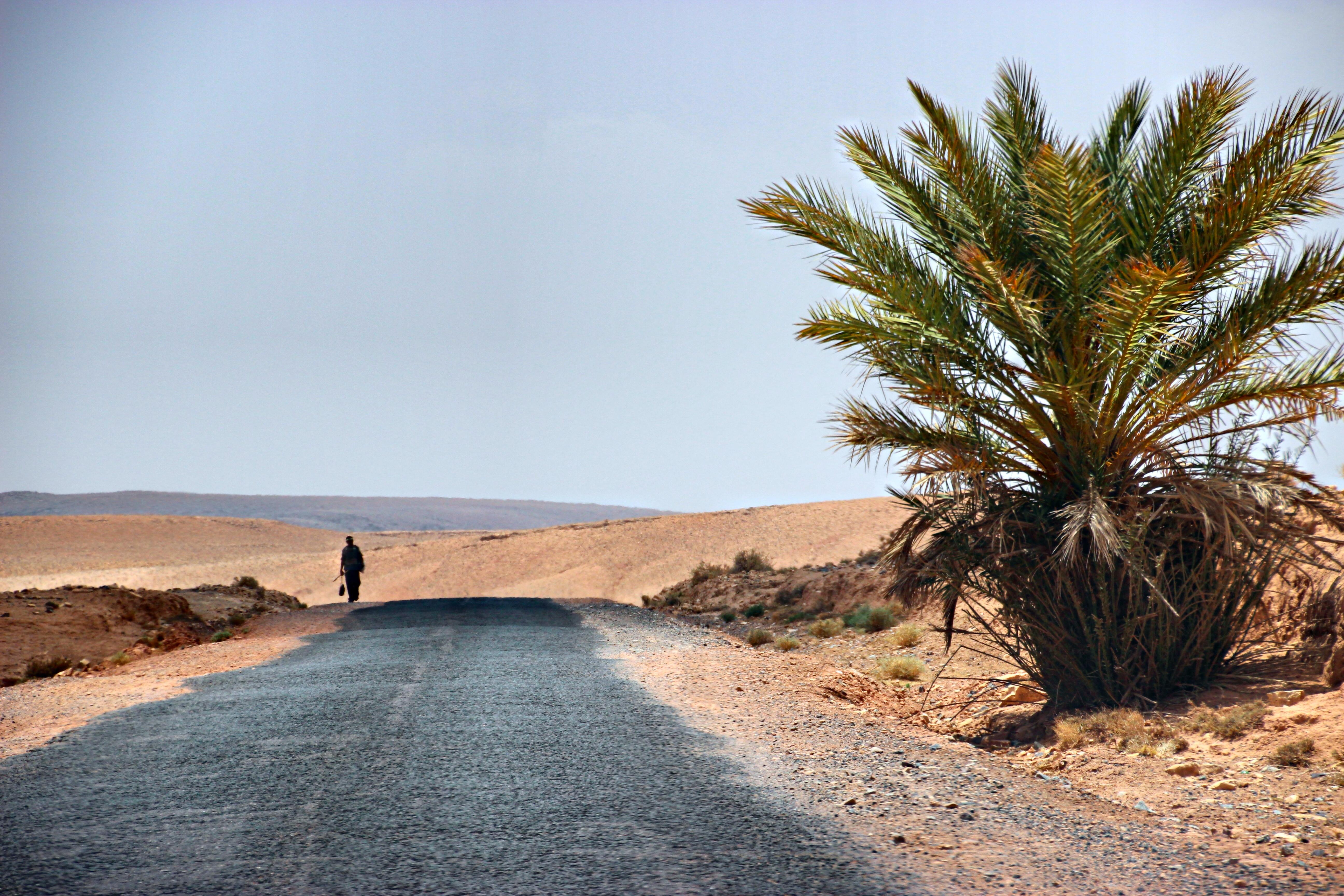 7-questions-reve-marocain
